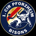 Pforzheim Bisons