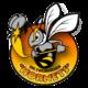 Hornets Zweibrücken